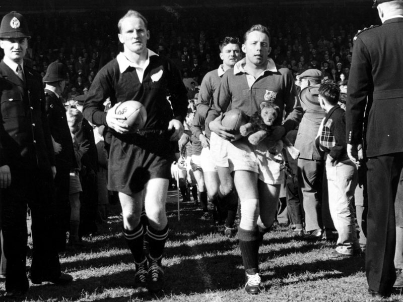 Lions in 1959